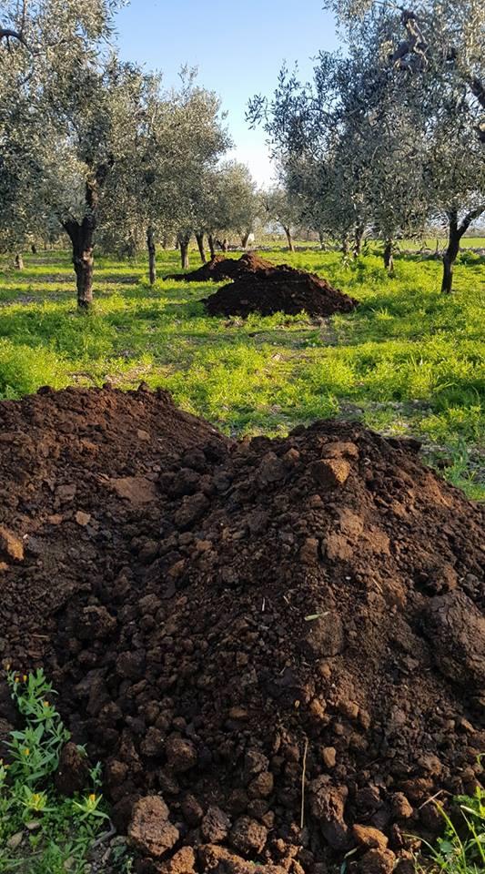 la fertilità del suolo