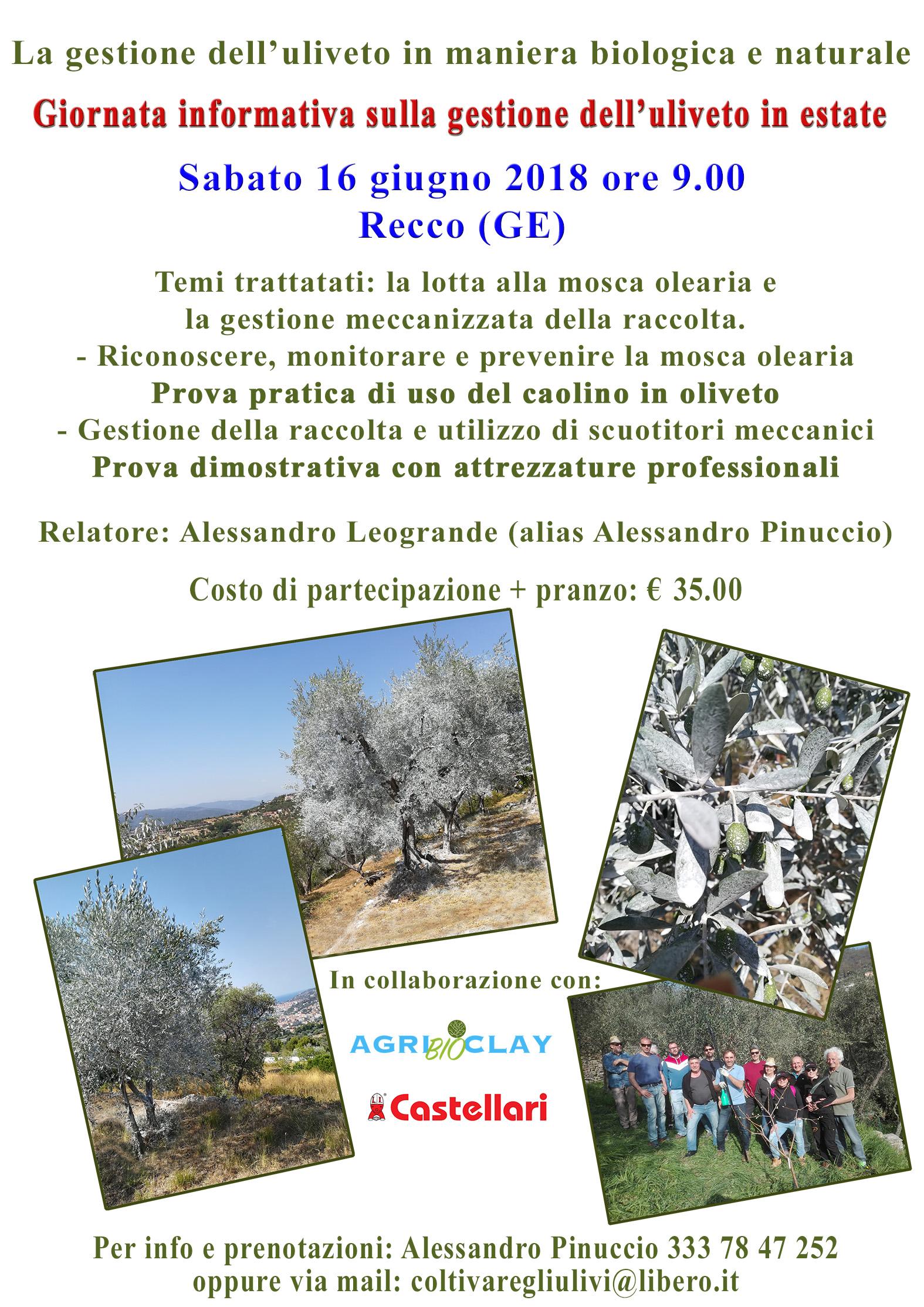 Recco (GE) – Giornata informativa sulla gestione dell'uliveto in estate