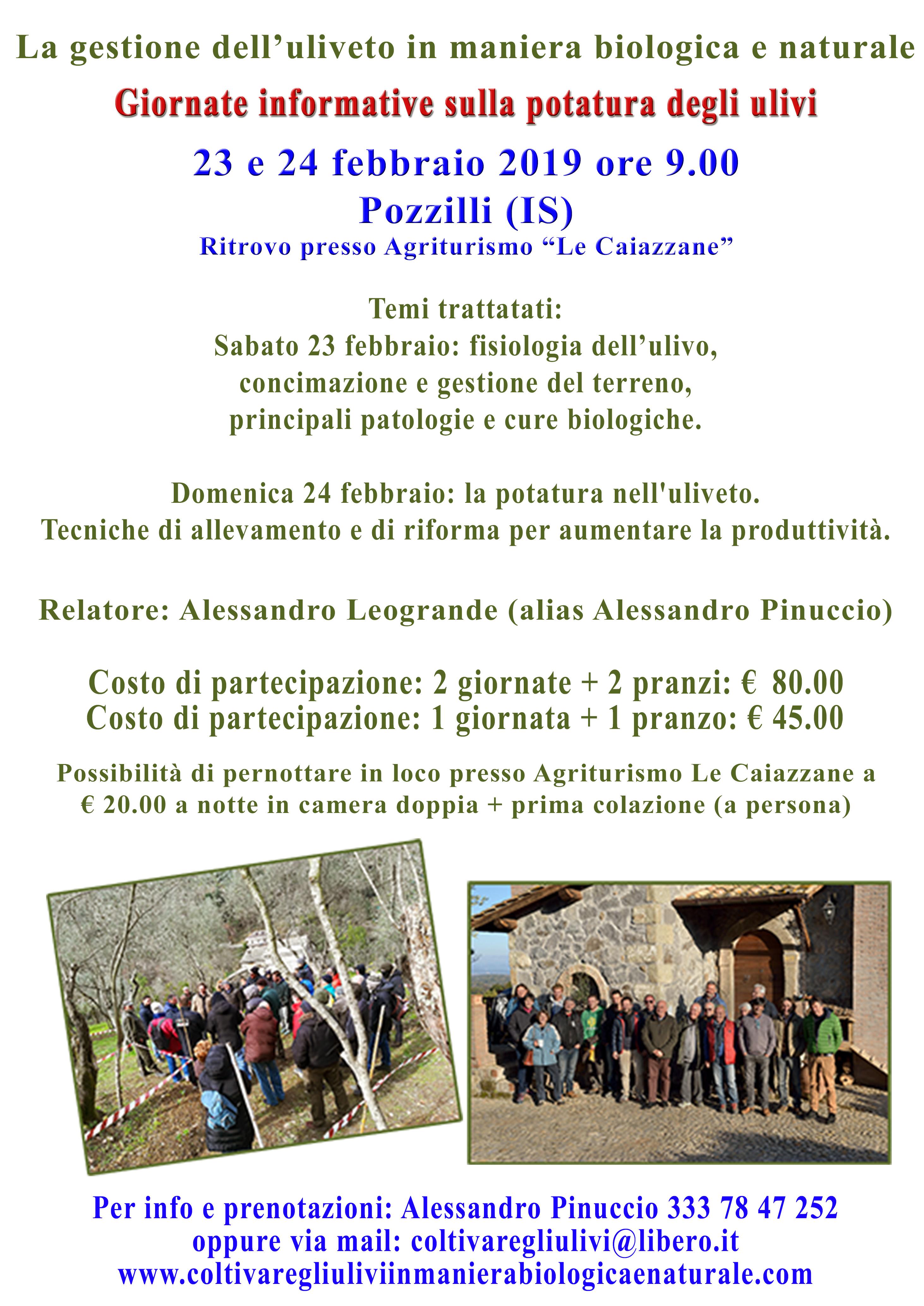 Pozzilli (Isernia) – Due giornate informative sulla gestione dell' uliveto